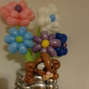 Balloon flowers with kitten in vase